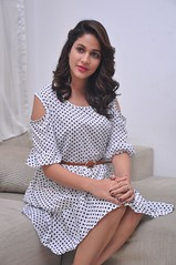 Lavanya Tripathi Latest Stills