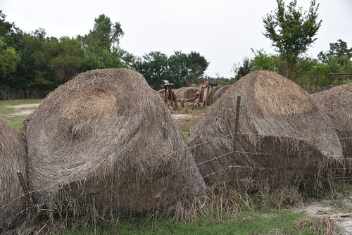 Destroyed hay bales and fencing