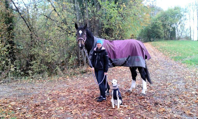 Urlaub mit Hund und Pferd, finde ich sehr genial!