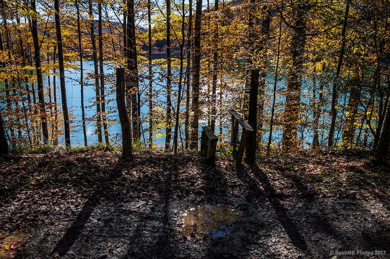 Alambrada de la orilla norte del lago Lareo