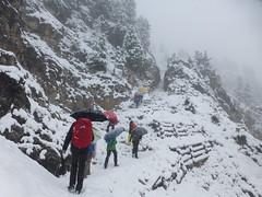 Winterwanderung zur Stevia Hütte