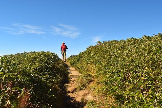 苗場山登山 山頂の入り口