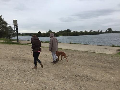 lake mary fl dating