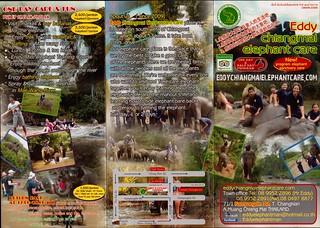 Eddy Elephant Chiang Mai Thailand Brochure 1