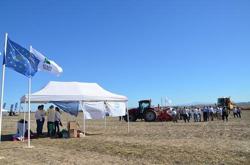 AionSur 37254779954_9644eefb72_d La agricultura de conservación, en peligro por el retraso de la renovación del herbicida glisofato, según Asaja Agricultura