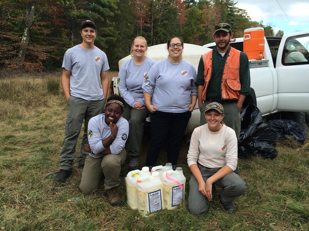 Photo of Maryland Conservation Corps members.