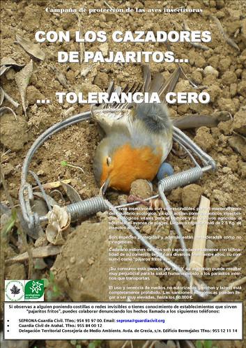 AionSur 37761085256_464de2ca23_d Jaedilla inicia la campaña de protección de aves insectívoras en Arahal Medio Ambiente