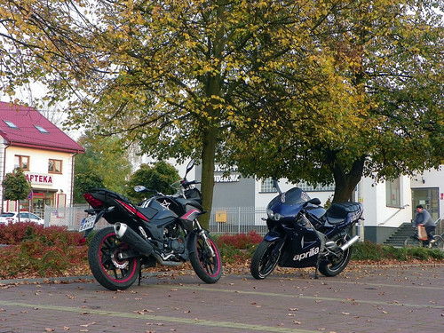 Aprilia RS125 & Romet Z-One T 125 | by woj9872