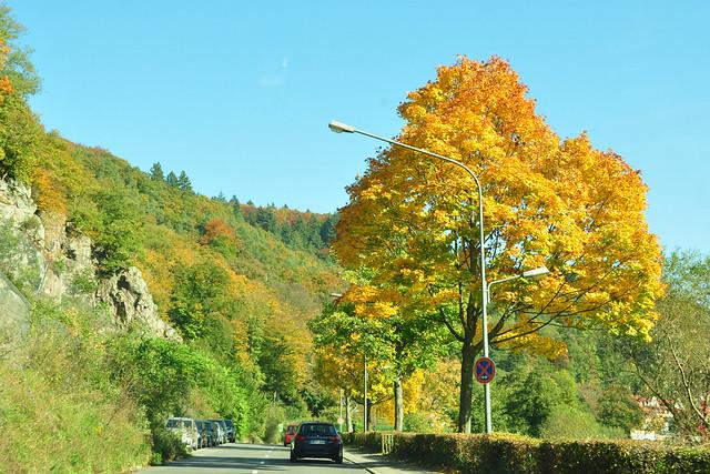 Fahrt auf der rechten Neckarseite durch Heidelberg zum Stift Neuburg ... Oktober 2017 ... Foto: Brigitte Stolle