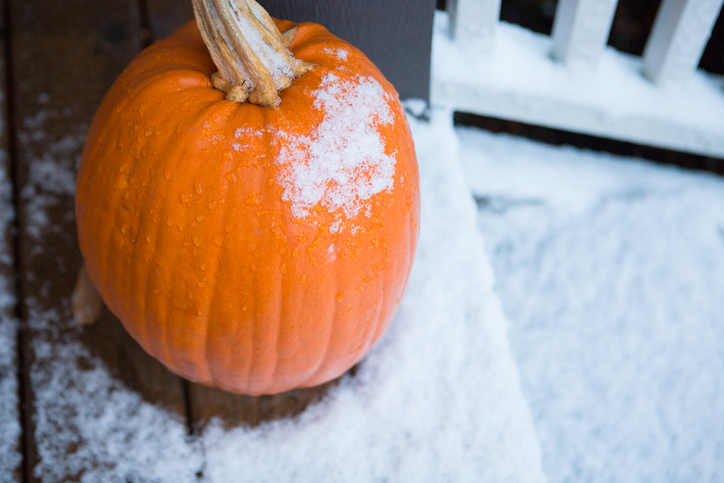 snow on a pumpkin