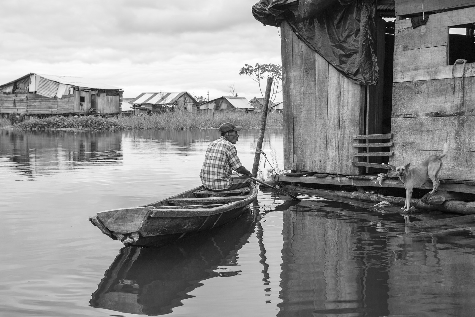 Man & Dog, Down on the River, Iquitos | by Geraint Rowland Photography