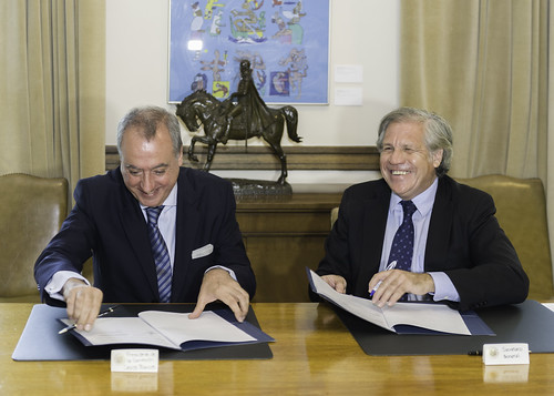 OAS and the White Helmets Initiative Extend their Alliance in Humanitarian Assistance in the Americas
