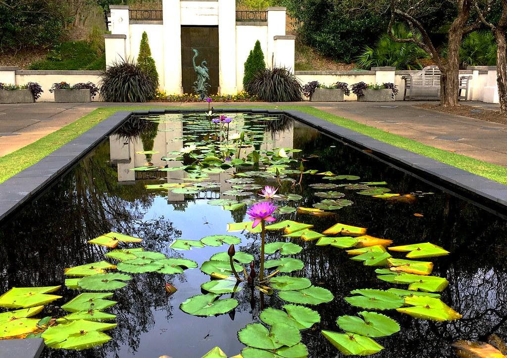 Birmingham Botanical Gardens | Andy Montgomery | Flickr