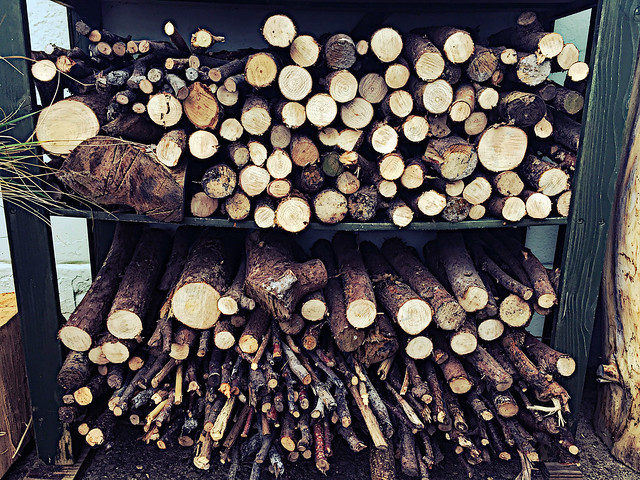 Shelves of chopped logs