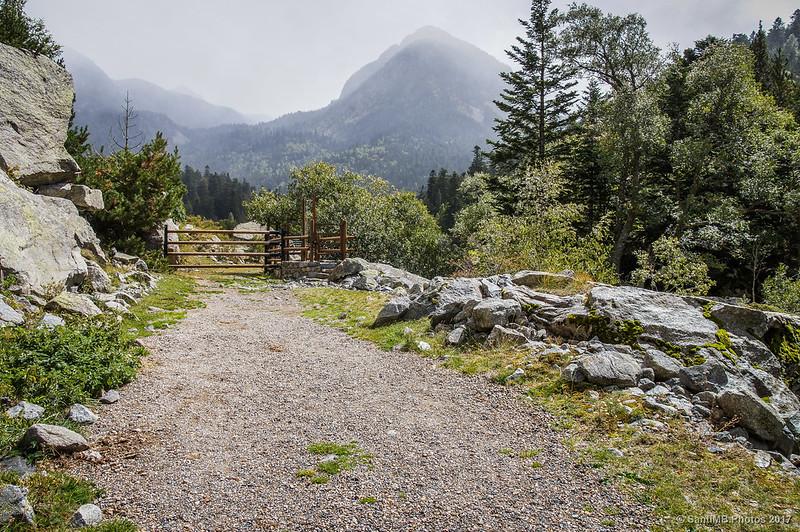 Puerta llegando al Planell del Sant Esperit