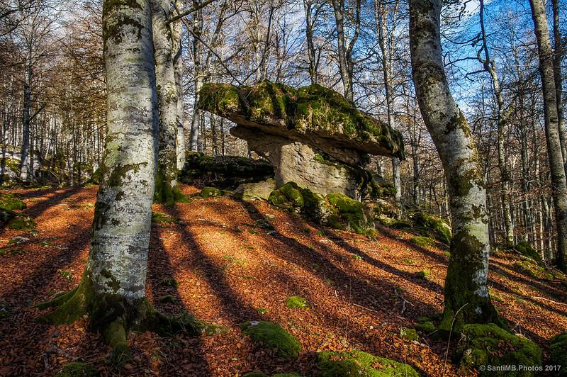 La Txapela en el Bosque Encantado de Urbasa