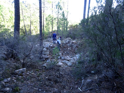 Le Chemin d'exploitation du Carciara en RD de la Figa Bona : une traversée de ruisseau non marquée sur la carte