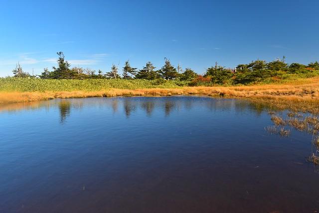 秋の苗場山登山 湿原に広がる池