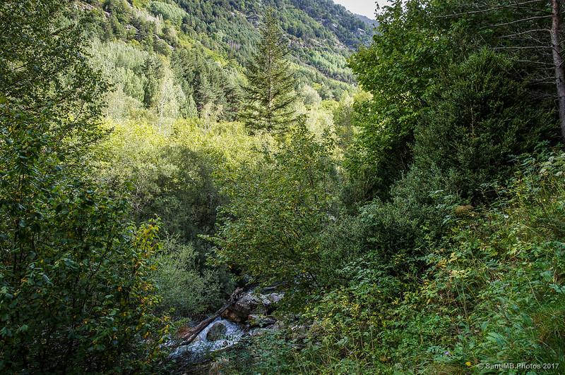 Río Sant Nicolau desde la Ruta de la Nutria