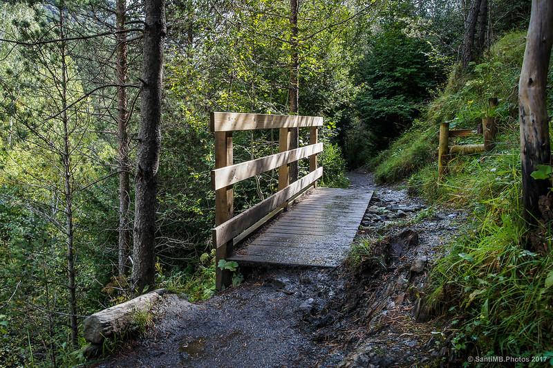 Pasarela de madera en la Ruta de la Nutria