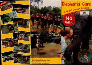 Elephant Care & Grand Canyon Jumping Chiang Mai Thailand Brochure 1