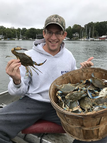 A nice catch of crabs
