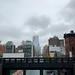 NEWYORK-8462