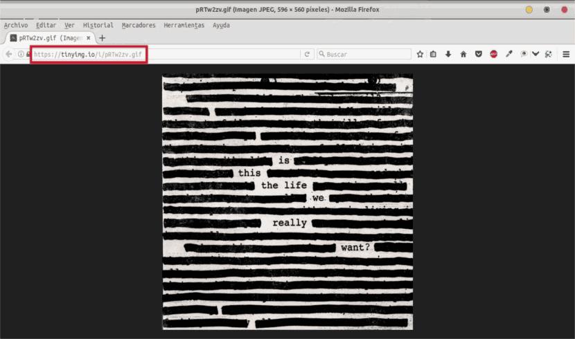 anypaste-archivo-gif-en-navegador