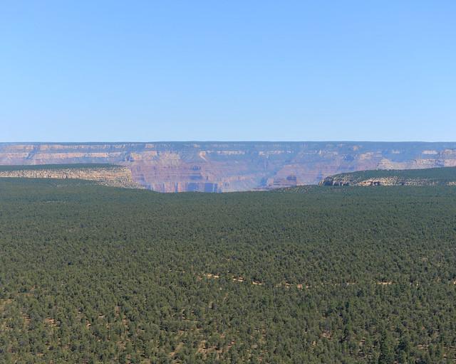 Llegando al borde del Gran Cañón del Colorado desde Tusayan