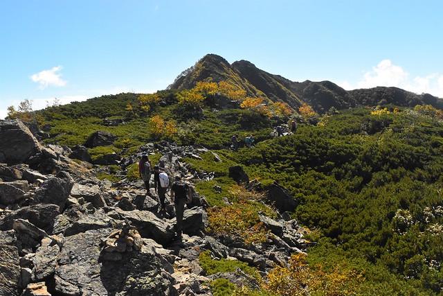 栗沢山からアサヨ峰への登山道