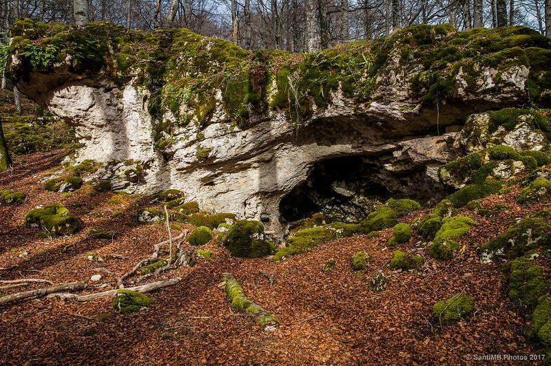 La Cuevita en el Bosque Encantado de Urbasa