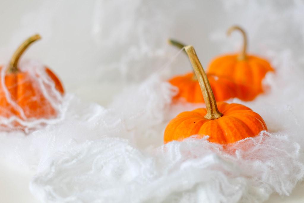 Halloween: Kürbisse eingehüllt in Spinnenweben | 📷 Stock Ph… | Flickr
