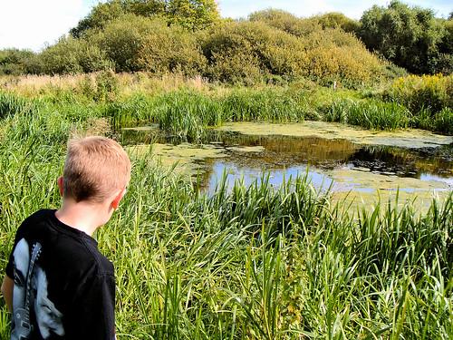 Pond on Beeston Regis Common