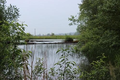 A conservation easement