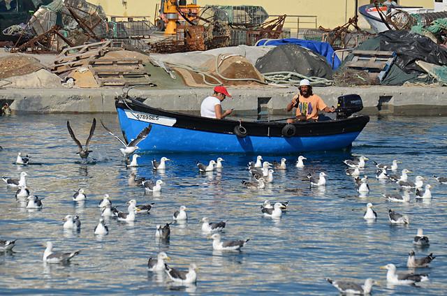 Fishermen, Setubal,Portugal
