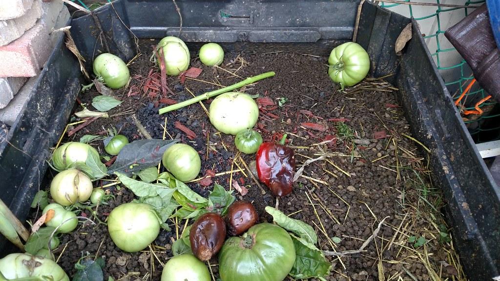 My Compost Bin 37846945712_b39da540bd_b