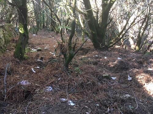 Les déchets autour des parkings de la Purcaraccia