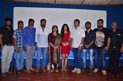 Nenu Kidnap Ayya Movie Successmeet Stills