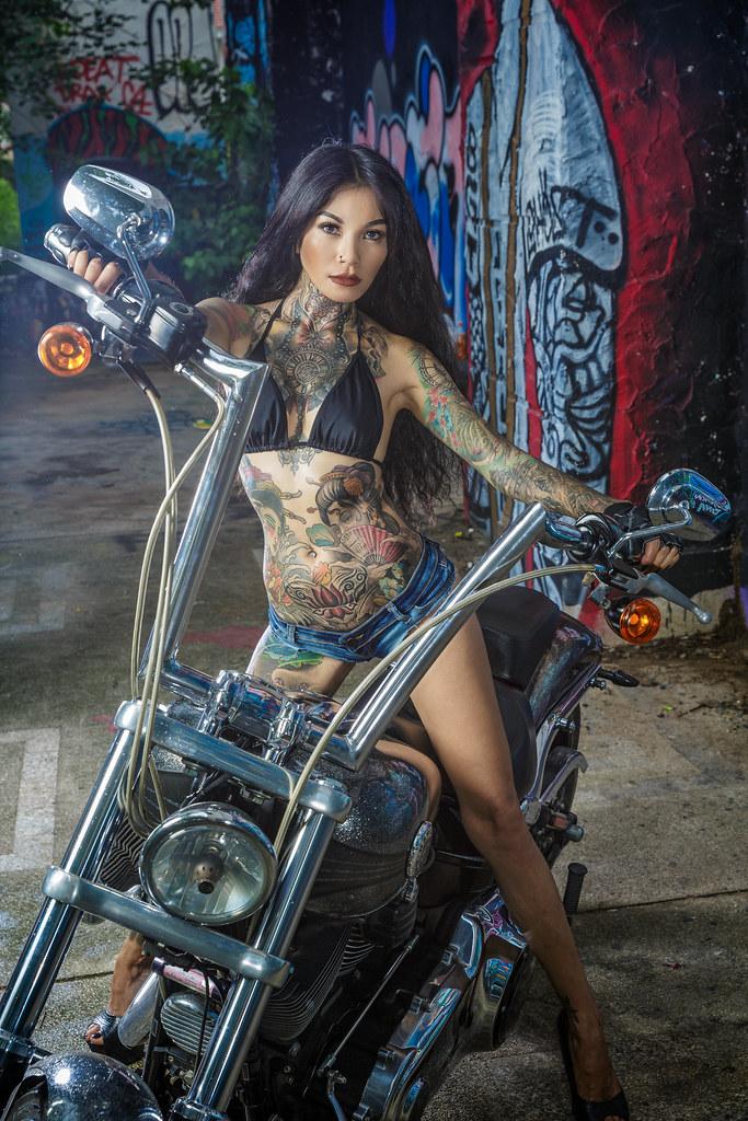 Harley Davidson New Models
