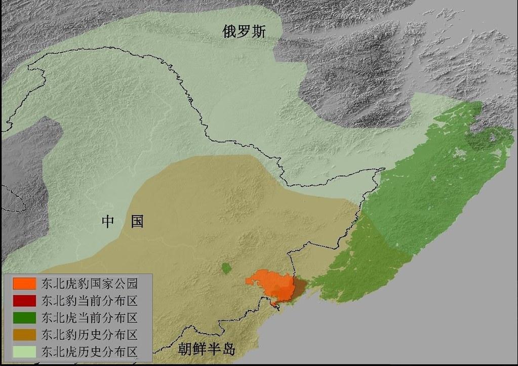 東北虎豹國家公園的所處位置。地圖由馮利民提供。