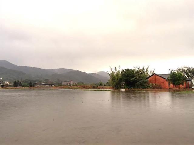 新北市農業局輔導金山六三社區,打造成「水水田莊」,圖片來源:新北市政府農業局提供。