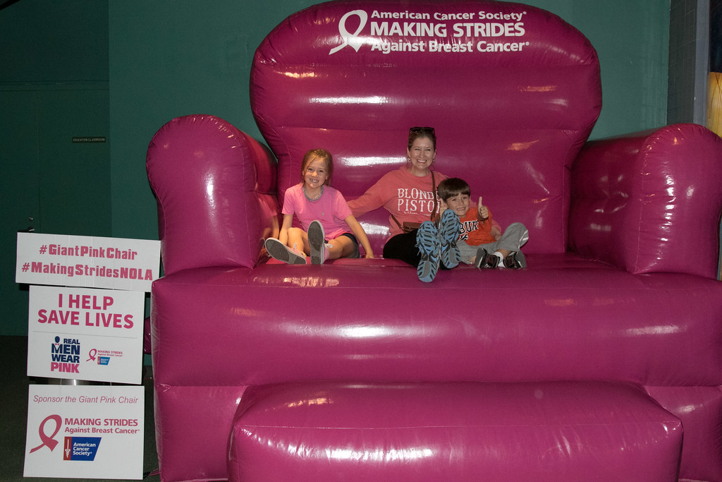 ... Breast Cancer Awareness Big Pink Chair36 | By Audubonimages