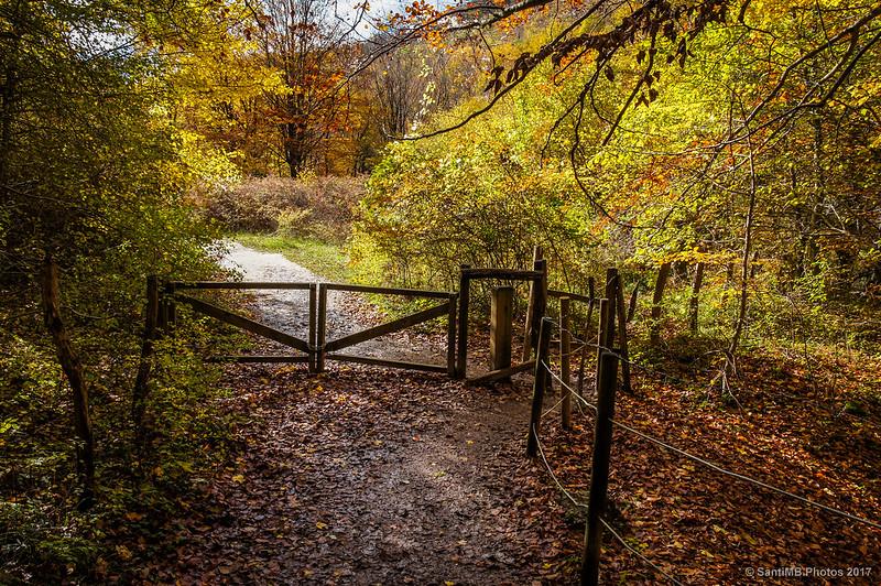 Puerta en el camino al Nacedero del Urederra