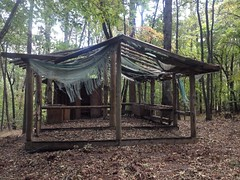 Former Camp Appalachian Wilderness - Primitive Camp 4