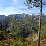 """L'ancien """"Chemin de la Montagne aux Plages"""" ou du Castedducciu (variante RG)"""