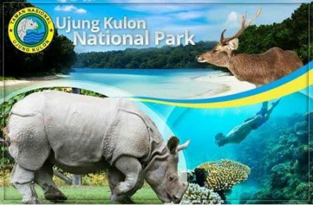 Hasil gambar untuk gambar taman nasional ujung kulon