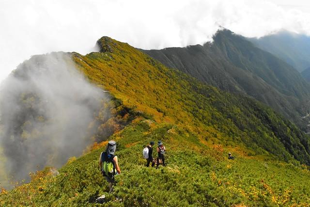 アサヨ峰から広河原峠への尾根道