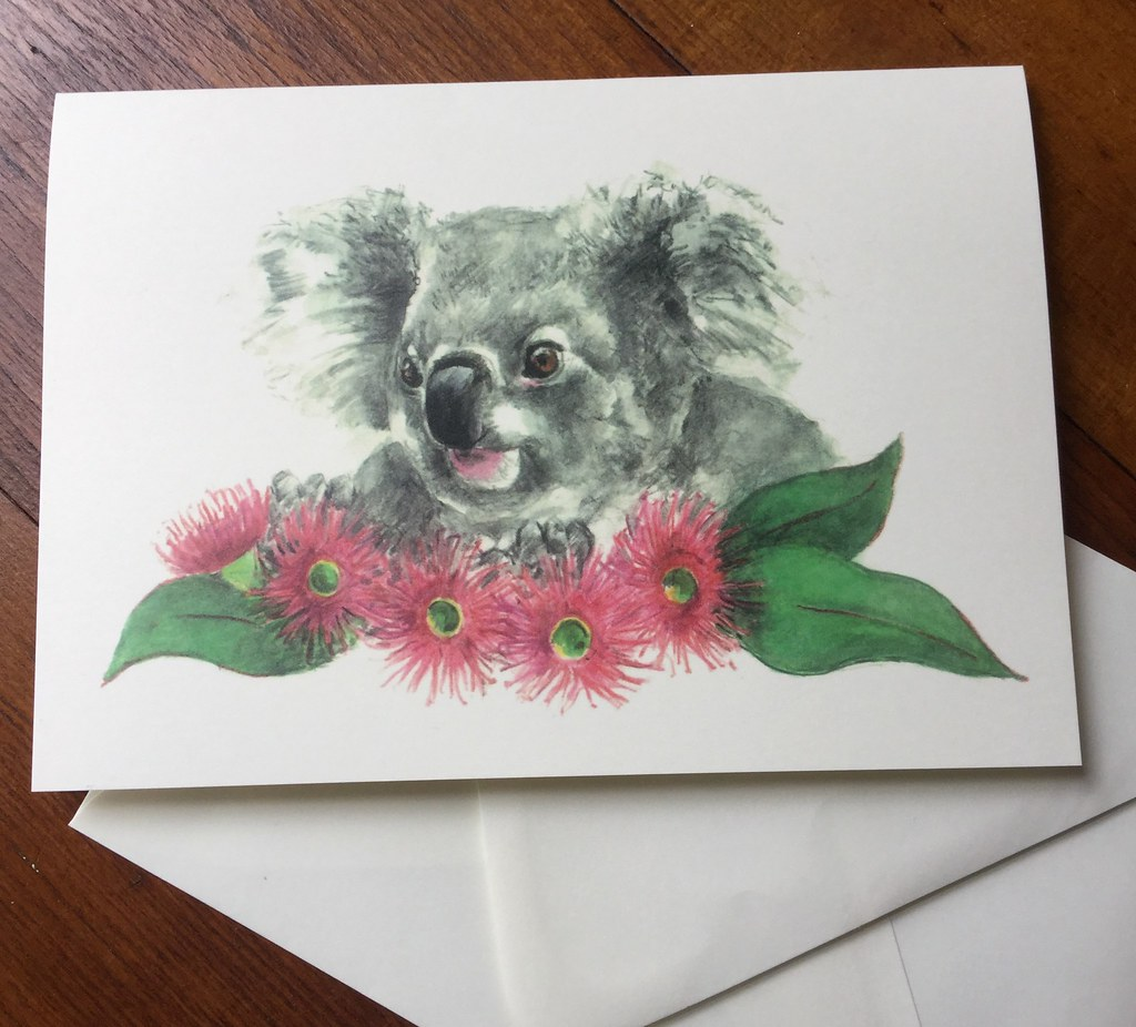 Koala Cards From Sketch To Store I Have Five New Greeting Flickr