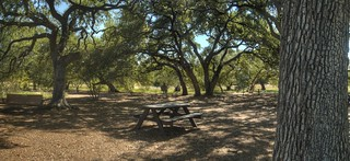 lounge swings and picnic tables at LadyBird Johnson Wildflower Center | by JoelDeluxe