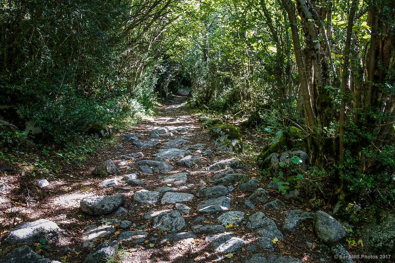 Después de cruzar el puente de la Palanca de Pei en la Ruta de la Nutria